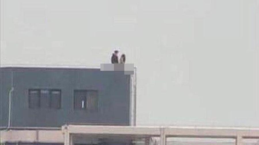 Sốc nặng trước những màn ái ân ngay trên sân thượng của các cặp đôi thích táo bạo nhưng lại không biết ngượng