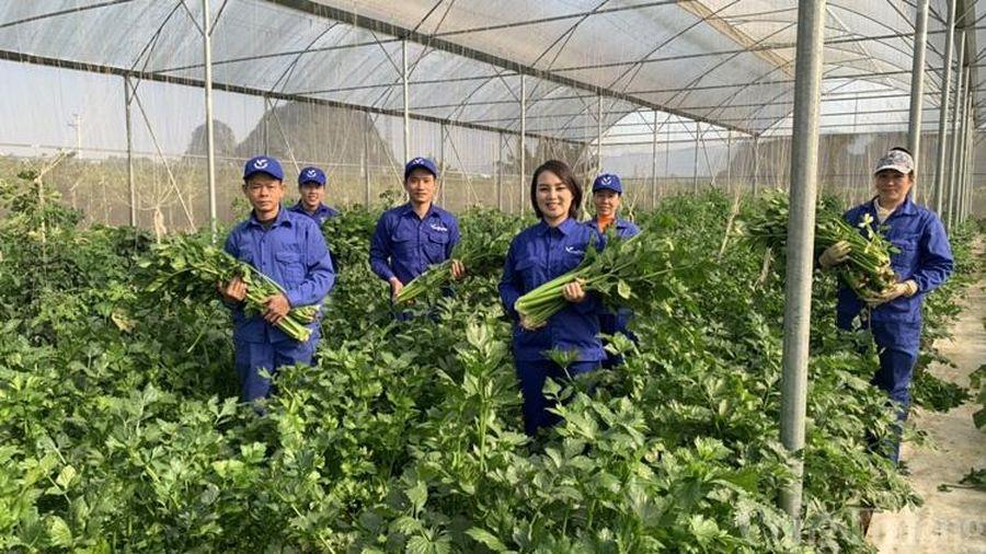 Doanh nghiệp Việt hướng đến chinh phục thị trường thực phẩm Halal