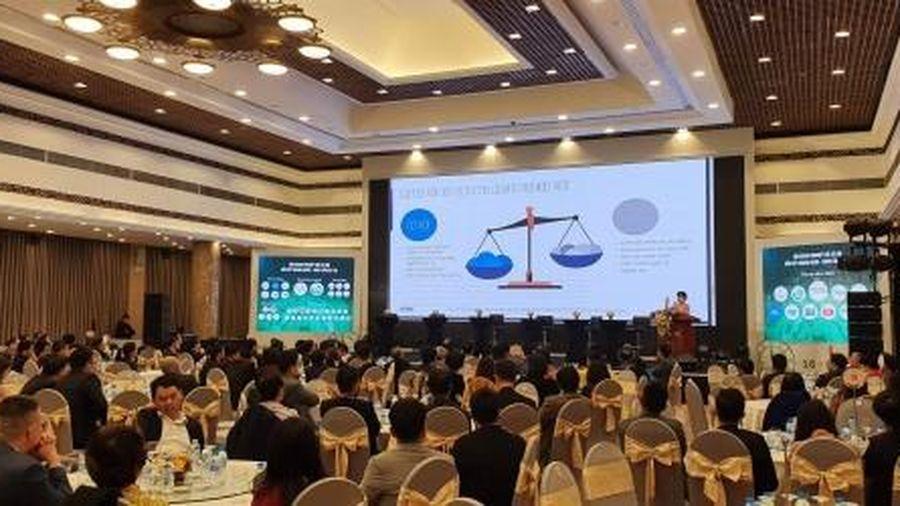 CEO toàn cầu nói gì về Việt Nam