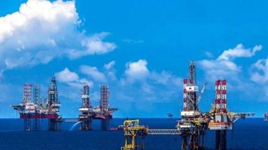 Tìm kiếm, thăm dò dầu khí vẫn trập trùng khó khăn
