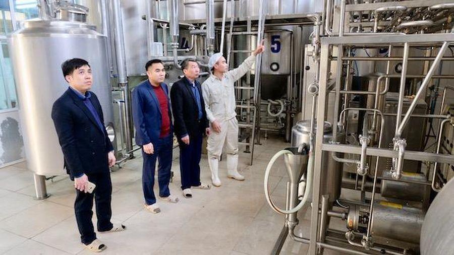 Hà Nội: Đề xuất tạm đình chỉ hoạt động cơ sở sản xuất mứt Tết tại huyện Gia Lâm