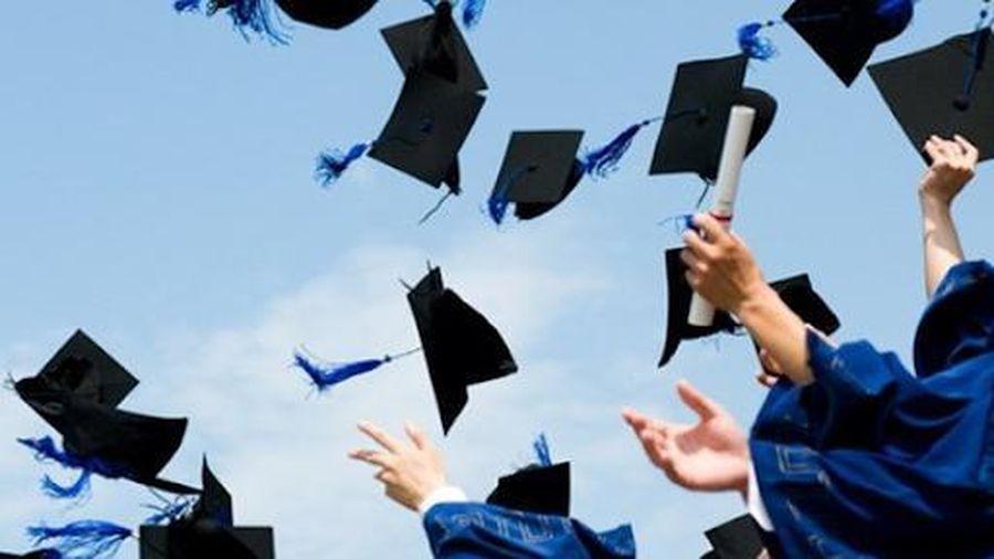 5 kỹ năng làm việc hiệu quả sinh viên mới ra trường cần có