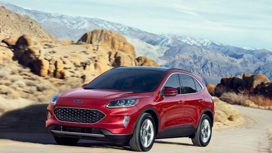 Ford Escape vào top xe cũ đáng tin dùng nhất tại Mỹ