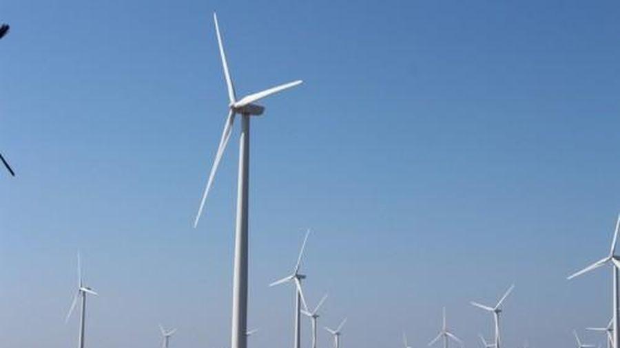Tiền Giang: Trao quyết định chủ trương đầu tư 2 dự án nhà máy điện gió