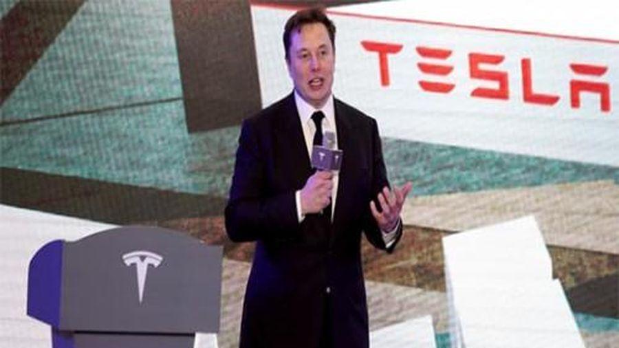 Tesla giới thiệu mẫu xe điện crossover Model Y được sản xuất tại Thượng Hải, Trung Quốc