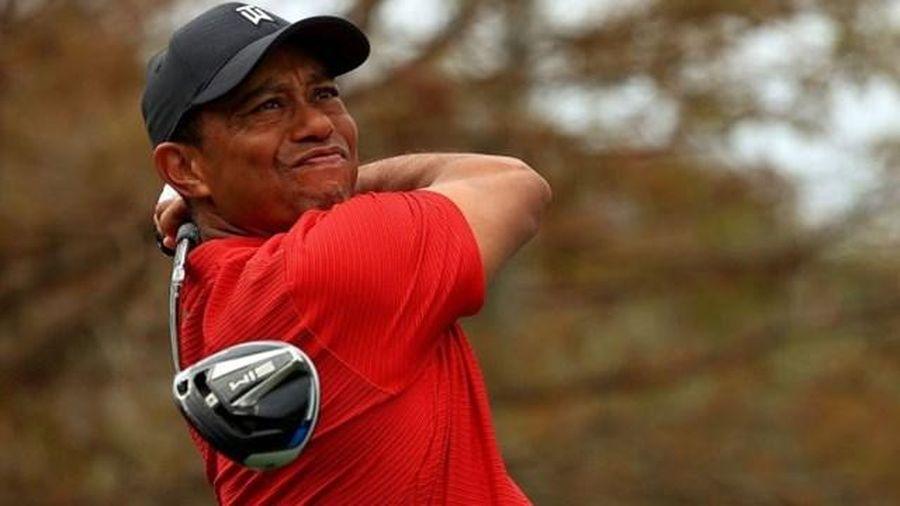 Golf thủ Tiger Woods phải phẫu thuật vì bệnh đĩa đệm tăng áp