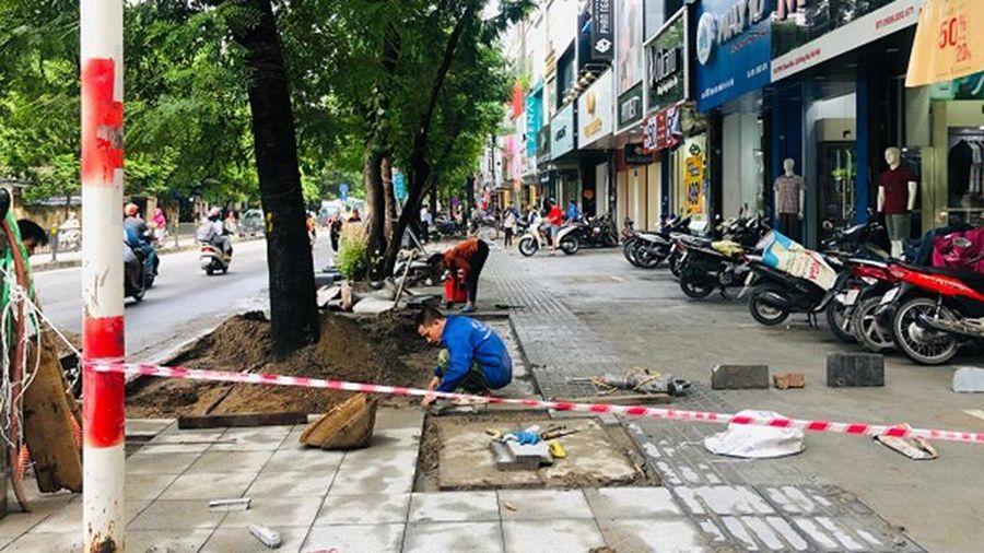 Hà Nội yêu cầu dừng thi công, đào đường từ ngày 20-1