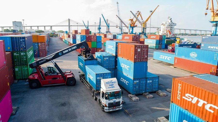 Lợi nhuận doanh nghiệp cảng biển 2020: Hàng container lên ngôi