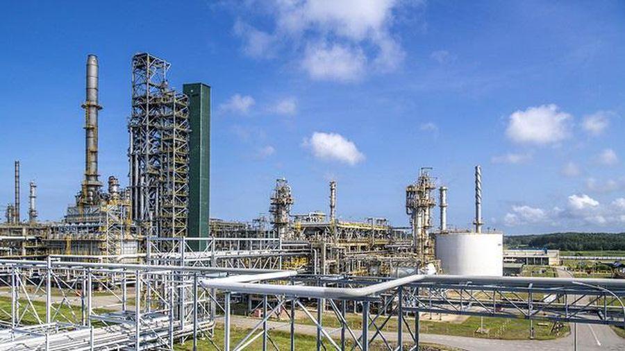 Lọc hóa dầu Bình Sơn: Quý 4 lãi ròng 1.254 tỷ đồng