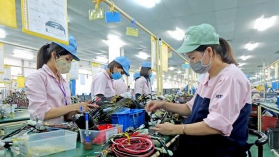 Doanh nghiệp nhỏ có trên 50% lao động nữ được giảm thuế
