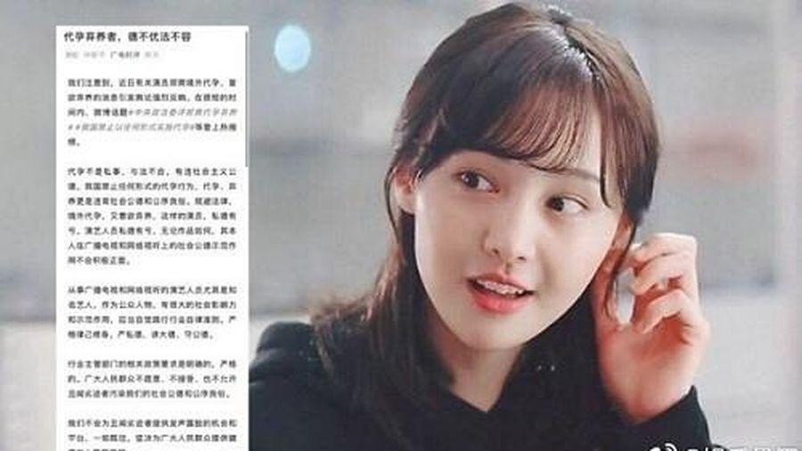 Trung Quốc gửi công văn thông báo cấm sóng toàn diện: Trịnh Sảng không còn đường lùi!