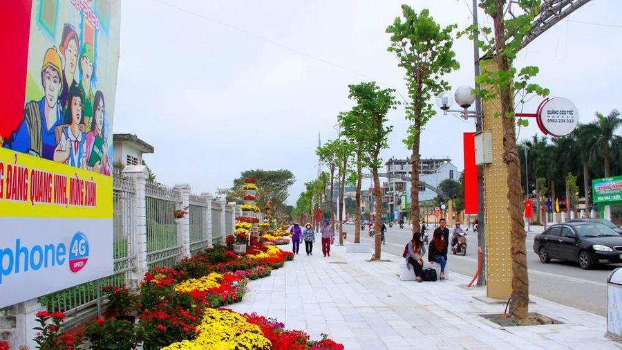 Thành phố Vinh xây dựng nhiều tuyến đường hoa đón Xuân Tân Sửu