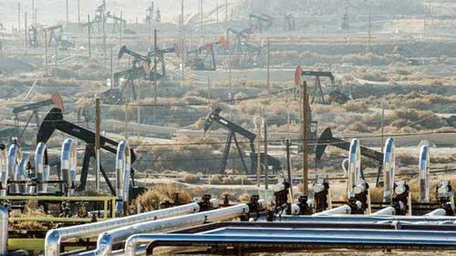 Giá xăng, dầu (21/1): Giảm nhẹ do những lo ngại từ dịch Covid-19
