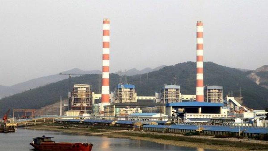 Giá vốn giảm mạnh, Nhiệt điện Quảng Ninh báo lãi quý IV cao kỷ lục, đạt hơn 800 tỷ đồng