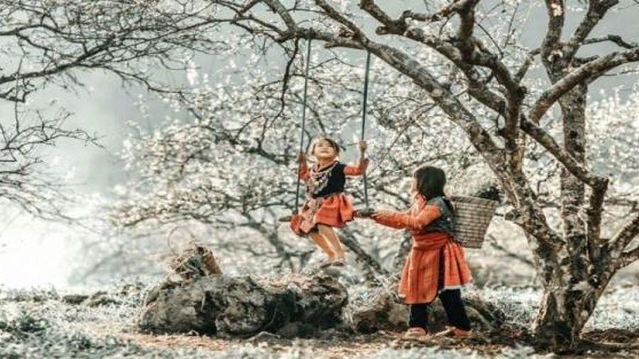 Thời tiết 10 ngày tới (21/1-31/1): Ảnh hưởng không khí lạnh, Bắc Bộ rét đậm từ 26/1