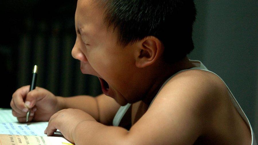 Trào lưu 'luyện gà' ở Trung Quốc và cuộc đua biến con thành thần đồng