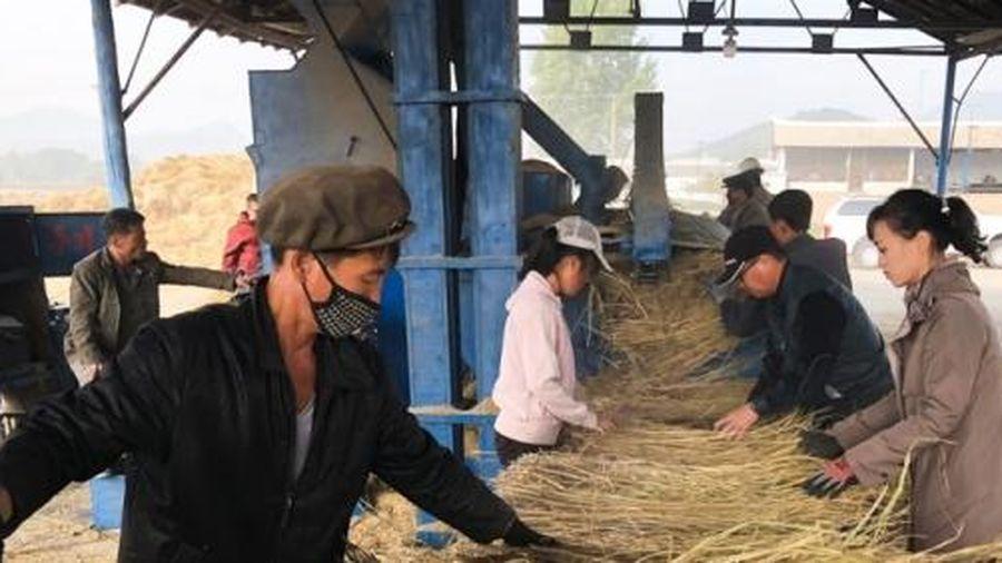 Triều Tiên đứng chót bảng xếp hạng về tỷ lệ suy dinh dưỡng