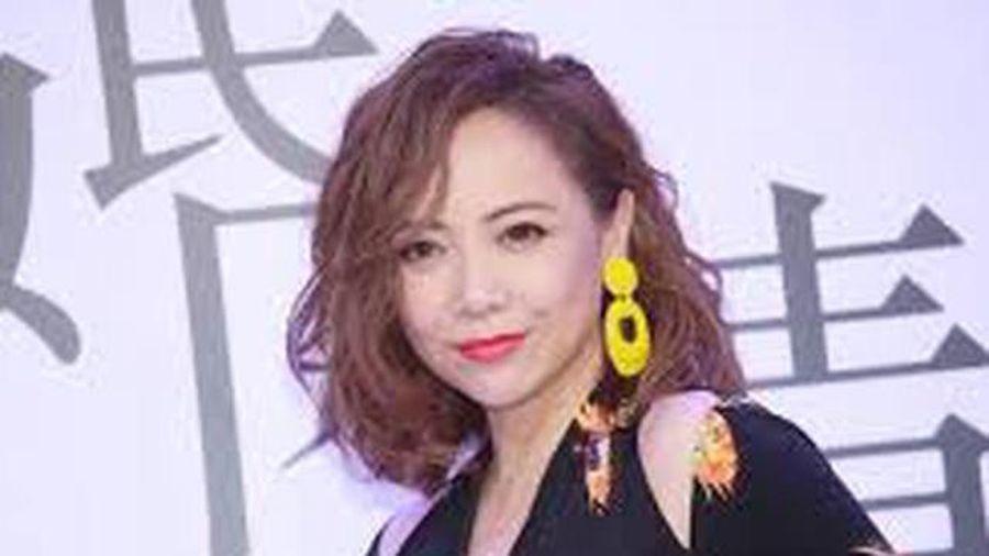 Những 'bóng hồng' đình đám một thời của TVB