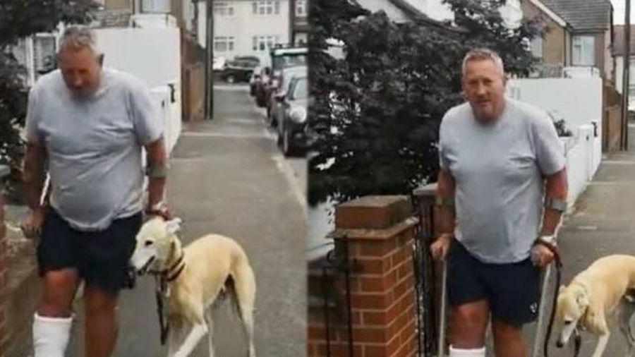 Thói quen bắt chước của chó cưng khiến chủ chi oan hơn 400 USD