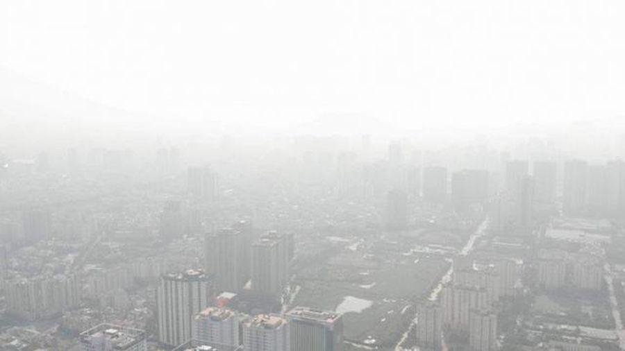 Hà Nội ô nhiễm không khí, chuyên gia bày cách giữ sức khỏe