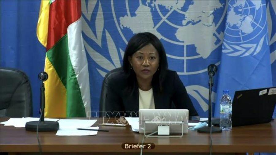 HĐBA Liên hợp quốc họp bàn về tình hình bất ổn tại CH Trung Phi