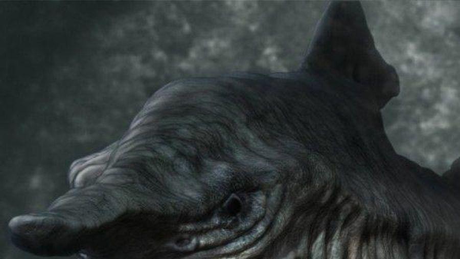 Bí ẩn về loài cá mập đáng sợ, xấu xí nhất hành tinh