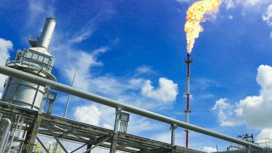 Giá dầu tụt giảm, PV GAS báo lãi 7.930 tỷ đồng thấp nhất trong 4 năm