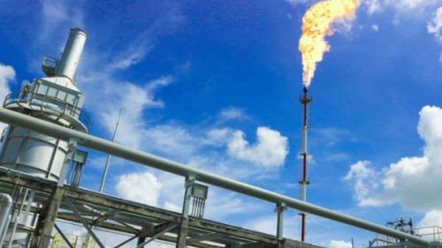Báo cáo tài chính quý IV/2020: PV GAS báo lãi 7.930 tỷ đồng