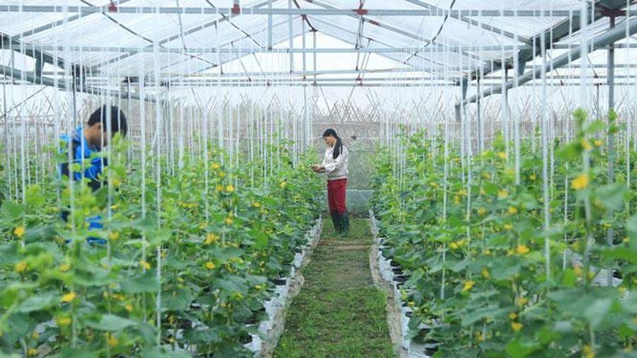 Đưa khoa học và công nghệ đến với nông dân: Mở cánh cửa phát triển