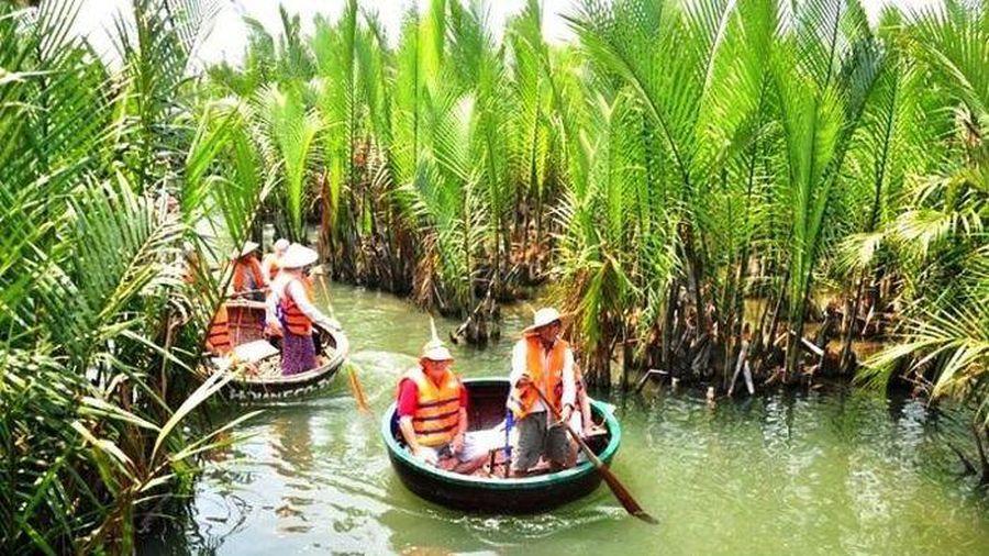 Quảng Nam rút tờ trình chuyển đổi 1ha rừng dừa làm khu đô thị