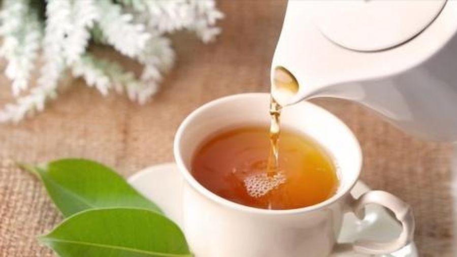 Uống nước trà xanh thế nào để có lợi cho sức khỏe