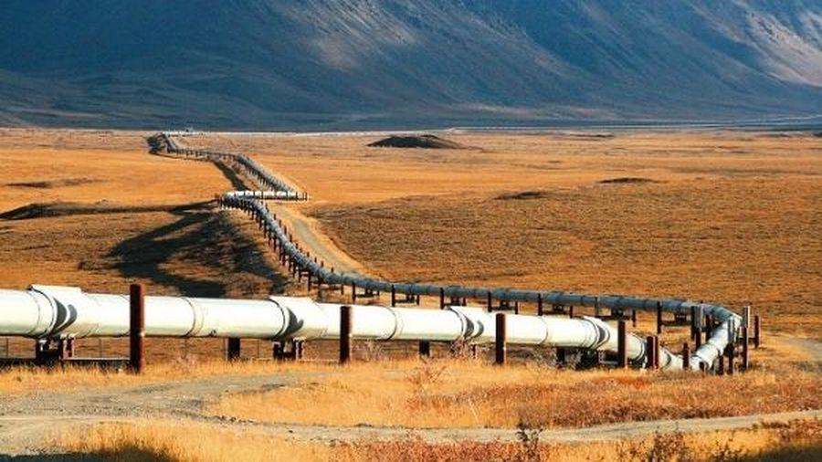 Tranh chấp giá cả khiến xuất khẩu dầu qua đường ống của Nga giảm rõ rệt