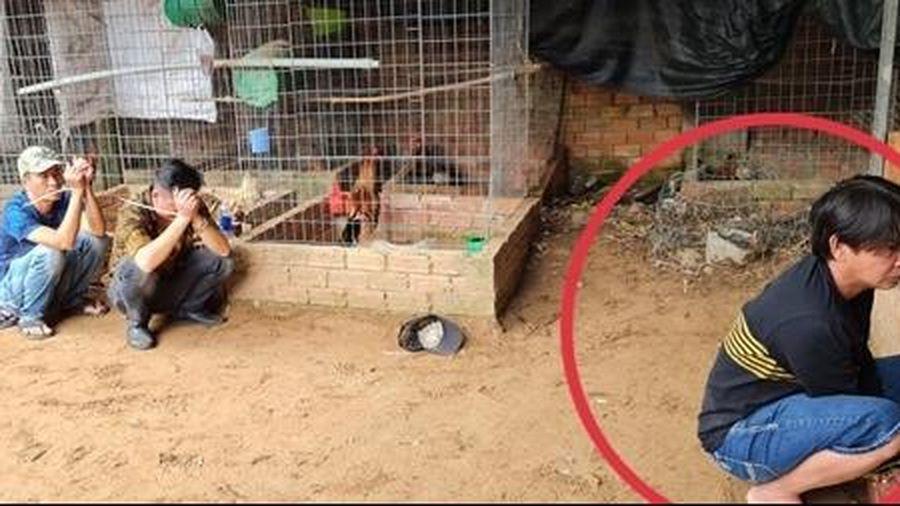 'Trùm đá gà' Hoàng Quí 'tái xuất giang hồ' đã bị tóm gọn