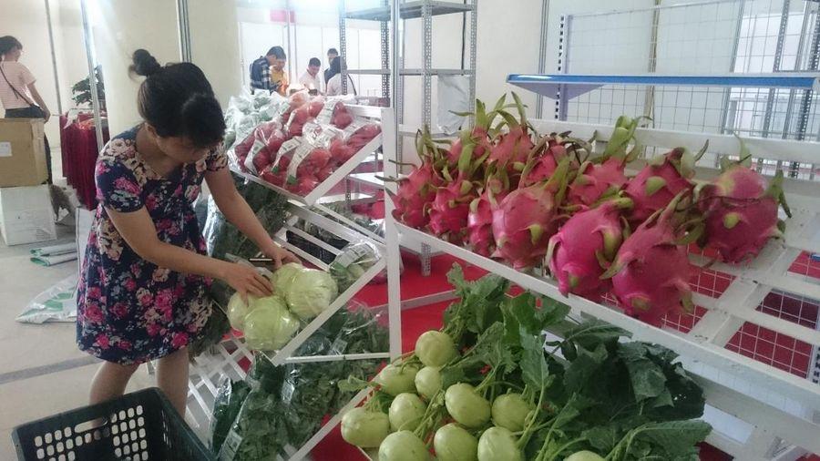 Ngành nông nghiệp phát triển vượt trội sau khi ra nhập WTO