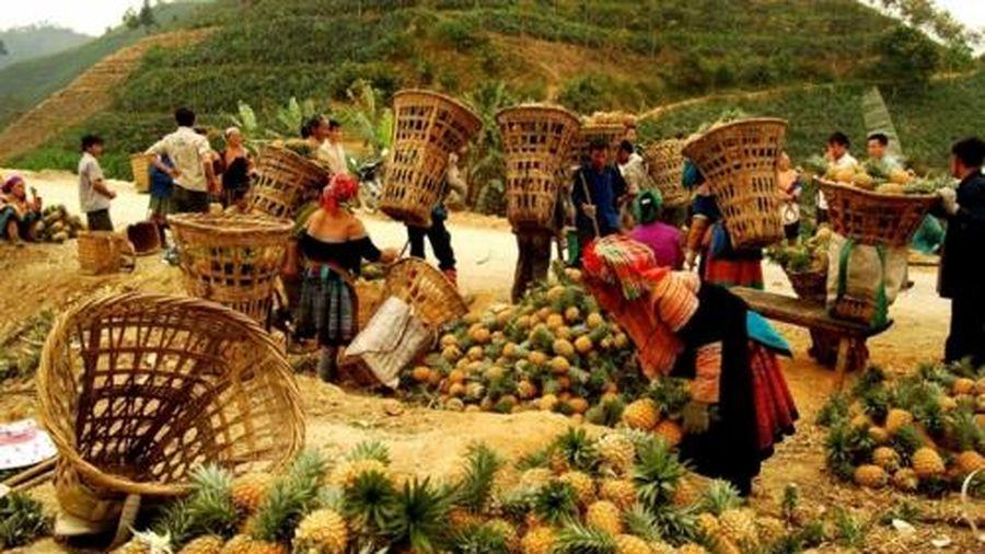 Mường Khương tiếp tục đẩy mạnh phong trào 'Nông dân sản xuất kinh doanh giỏi'