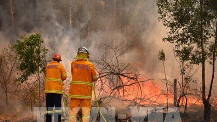 Cháy rừng tại thành phố Adelaide của Australia