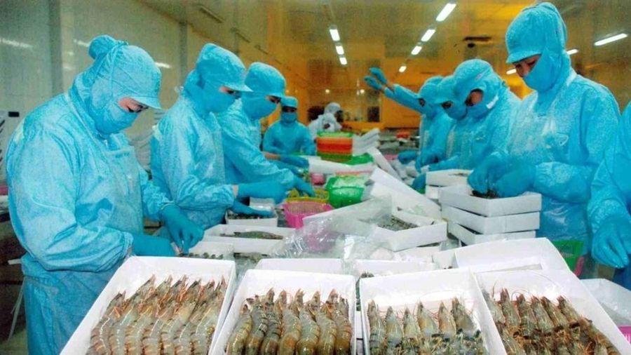 Việt Nam – Australia: Hướng tới trở thành đối tác thương mại lớn