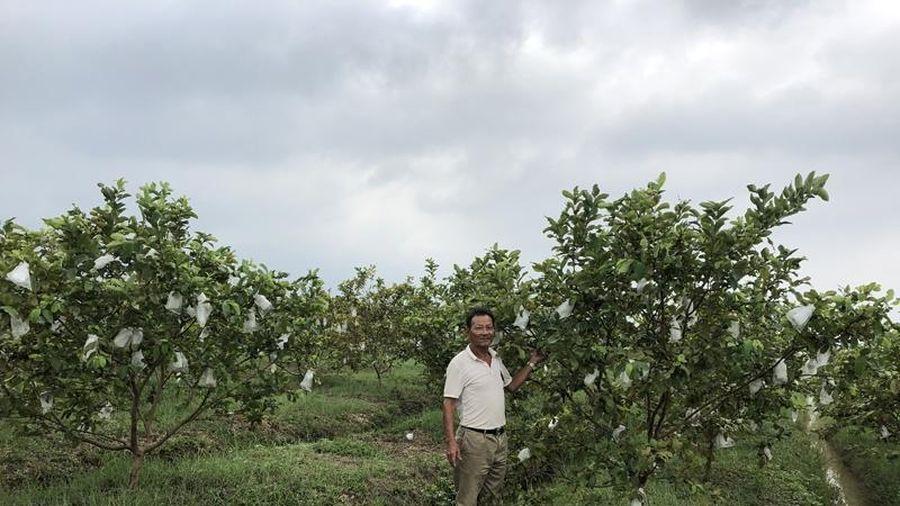 Lan tỏa những việc làm theo Bác ở thị trấn Triệu Sơn