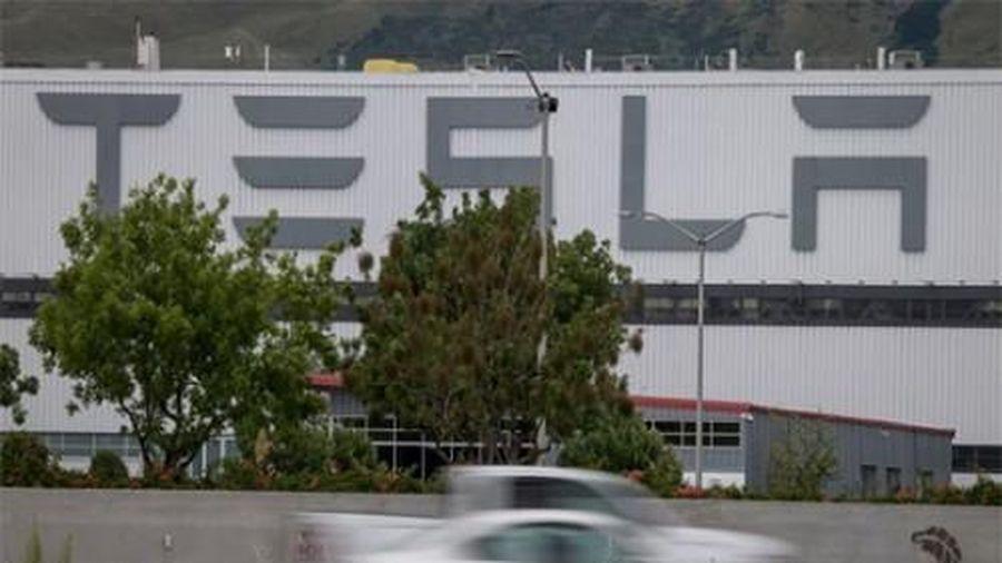 Tesla kiện cựu nhân viên vì cáo buộc ăn cắp phần mềm
