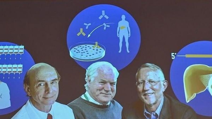 Khám phá virus viêm gan C giải mã căn bệnh bí ẩn, khó chữa