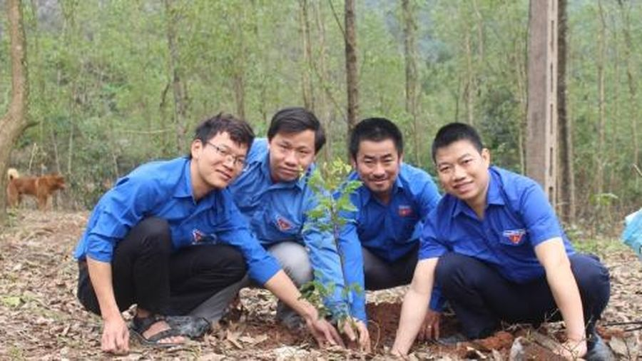 Quảng Trị triển khai hưởng ứng 'trồng 1 tỉ cây xanh'