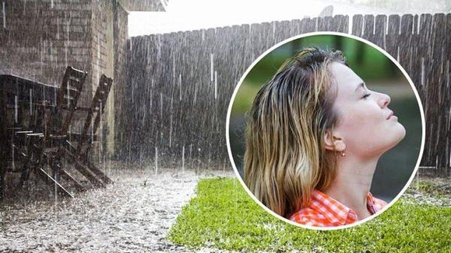 Vì sao mưa và đất ướt lại có mùi thơm?