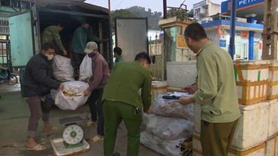 1,3 tấn sản phẩm động vật bốc mùi hôi thối chuẩn bị giao cho nhà hàng