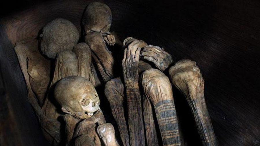 Khám phá tục ướp xác kỳ lạ của người Philippines cổ đại