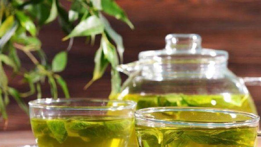 Công dụng thần kỳ của trà xanh đối với sức khỏe