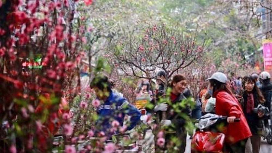 Dự báo Tết Tân Sửu 2021 sẽ ít có khả năng xảy ra mưa đá như đêm giao thừa Tết Canh Tý 2020