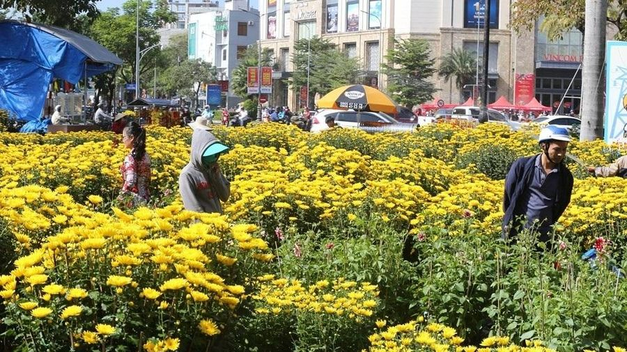 Thành phố Huế: Nghiêm cấm tổ chức bán hoa trên vỉa hè trong dịp Tết Nguyên đán Tân Sửu
