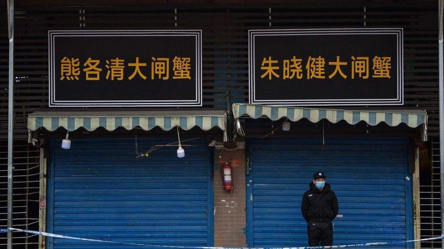 Chuyên gia WHO sắp bắt đầu điều tra nguồn gốc virus ở Trung Quốc