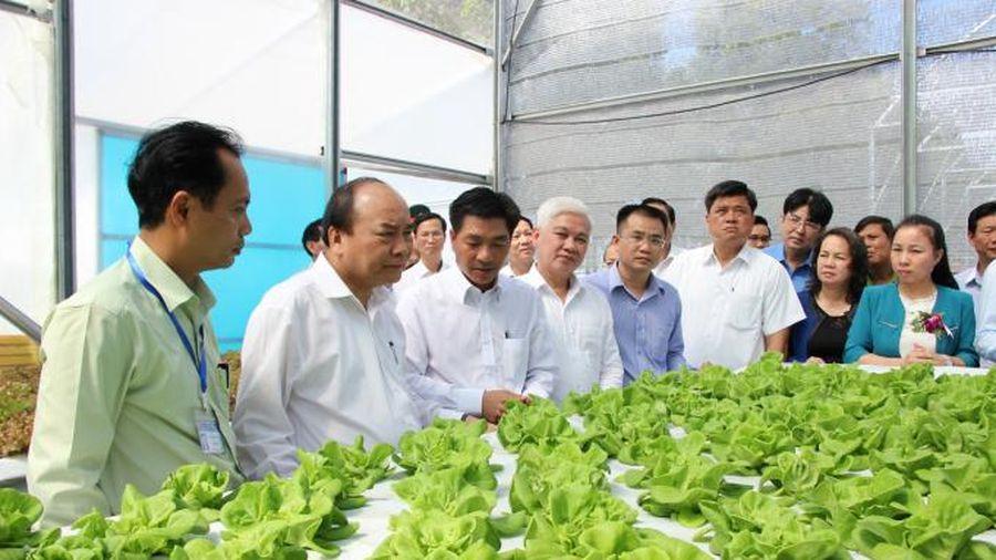 Bình Phước phấn đấu trở thành địa phương đi đầu về phát triển nông nghiệp công nghệ cao