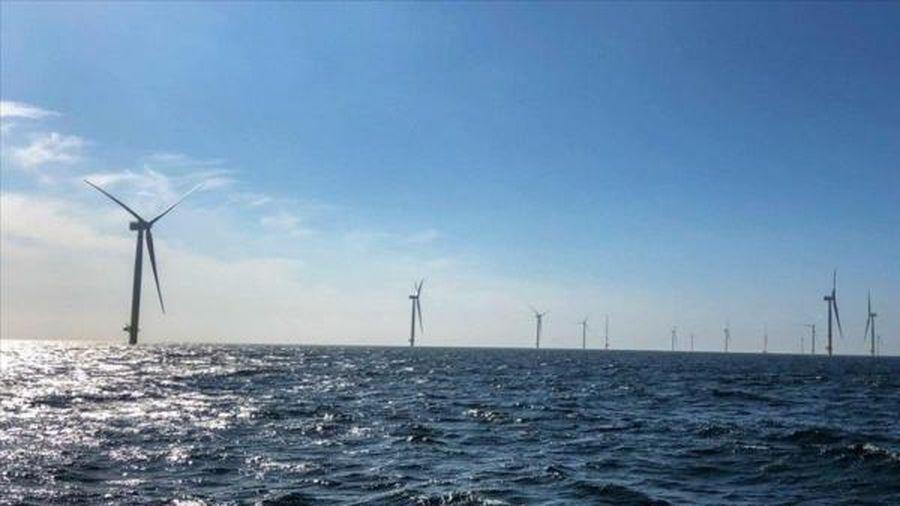 Lần đầu tiên năng lượng tái tạo vượt qua năng lượng hóa thạch tại châu Âu